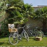 Balade à vélo et pique nique