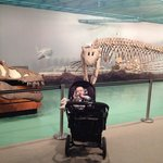 Our little one in comparison to the fossils on display