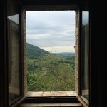 My Umbrian view!