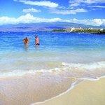 Big Island's best snorkeling!