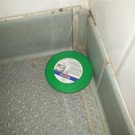 The ant trap in the changing rooms.