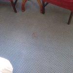 Filthy Carpet !