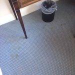 Disgusting Carpet !