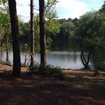 Lovely little lake