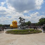 Rubber duck and outdoor sculpture
