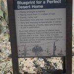 Desert Home Blueprint