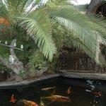 Lago com peixes no Joe's Beer House