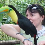 toucan and me