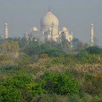Vista Taj