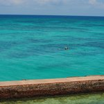 Beautiful Turquoise water around the Dry Tortugas
