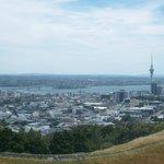 view - Auckland CBD