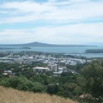view - Rangitoto island