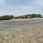 nice beach area and palapas