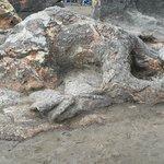 Batu Malin Kundang