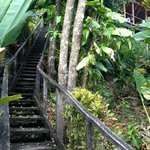 The stairs leading up to the Monkey House