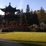 Amazing Asian Pagoda