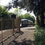 GWR Railcar 22 in a rural setting at the Centre's Oxford Road Halt.