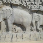 Lord Indra's mount- Airavata
