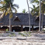 The restaurant is right at the beach, nestled among coconut trees