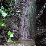 """La cascade du vallon """"obscur"""""""