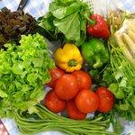 Fresh Veggies from local market