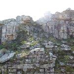 Asentamientos rocosos