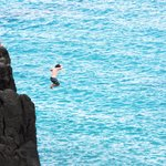 Cliff jumpers jumping into shallow water