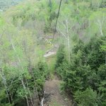 White Knuckle Pine -- 80ft. drop before line levels out.
