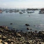 Leão Marinho no Fosherman´s Wharf