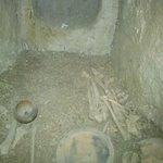 Restos de huesos del Neolitico.