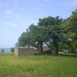 Nearby Tiwi