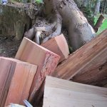 Dry wood for sale at a reasonable price