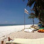 Hotel sun beds by the beach