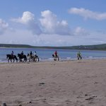 on the beach in dingle (horse ride optional activity)