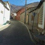 Calle de Pisco Elqui