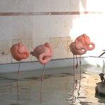 Lobby flamingos