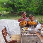 Детки собрали в саду апельсинов