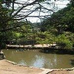Lago das carpas e acesso ao mini-zoo