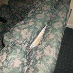 Torn Sofa bed