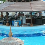 Excellent pool bar (see the fridge??)