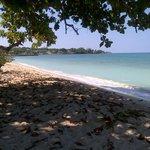 playa del hotel ( seven mile )