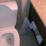 hotel plunger, bagged and left next to toilet to assist in flushing