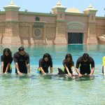 Shallow dolphin encounter at Atlantis Dubai