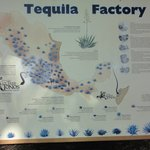 Tequila Factory Map