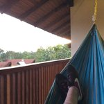View from the hammock