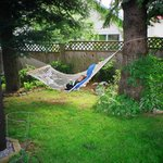 Relax in the Hammock in the summer shade