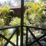 Garden vie cottage path