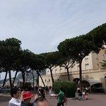 大公宮殿・・・植栽