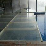 Some wierd floor covering pool