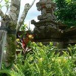 beautiful garden of Umajati